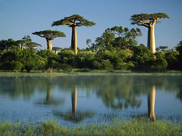 10 Natural Wonders That Could Disappear By 2050