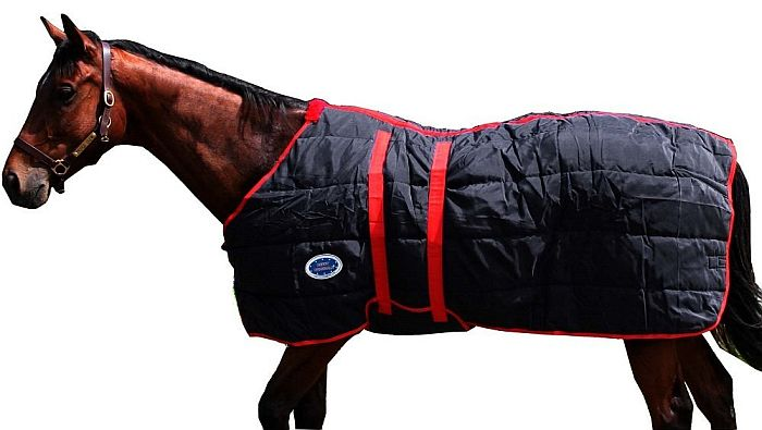 Derby comes up with this stable horse blanket, best for even colder winters.