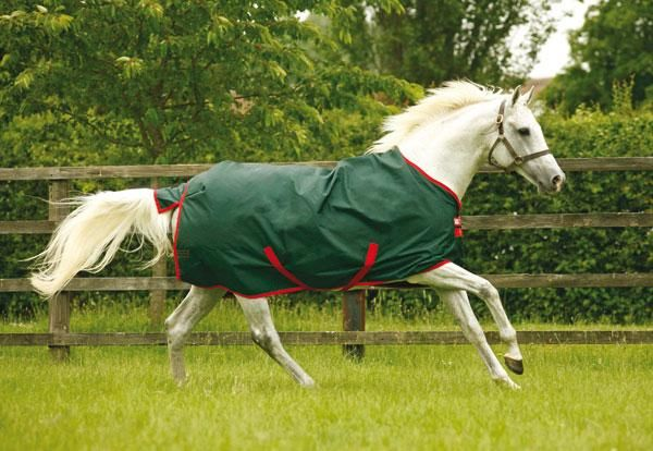 Rambo is a heavy duty blanket for horses who really like being active.