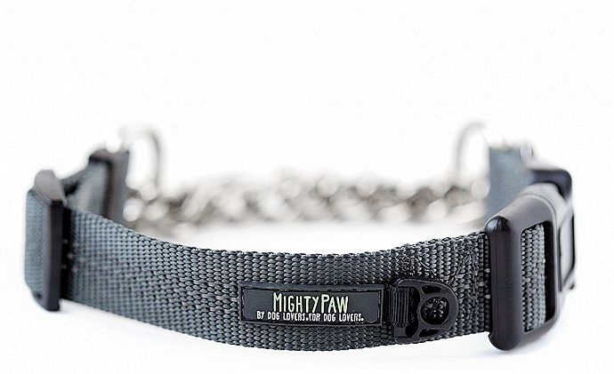 A high class martingale collar for pitbulls, Mighty Paw delivers unprecedented training performance.