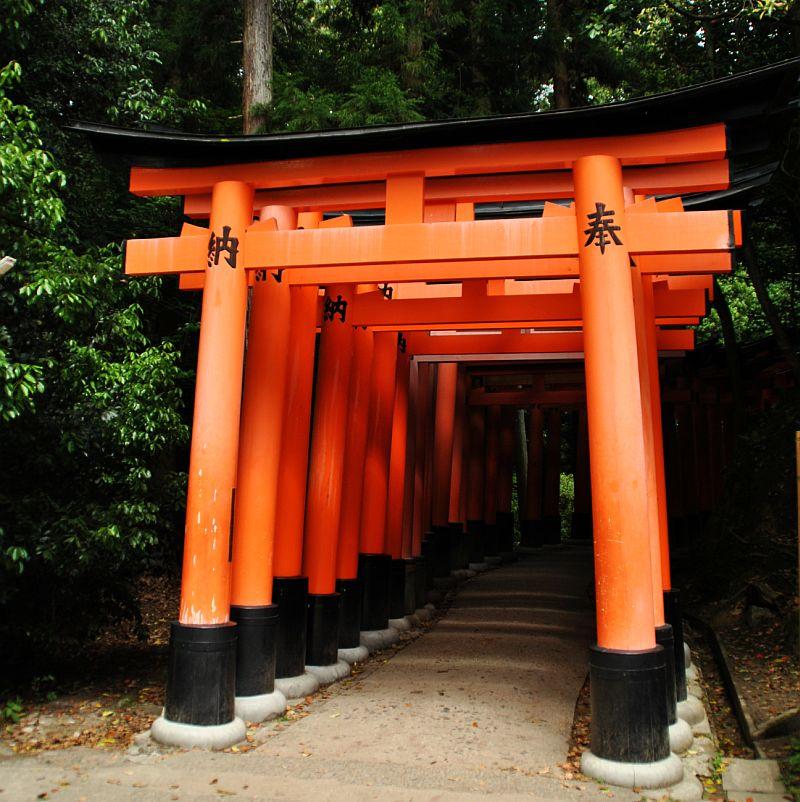 Fushimi Inari Taisha: A Magic Filled with Steps, Temples & Foxes