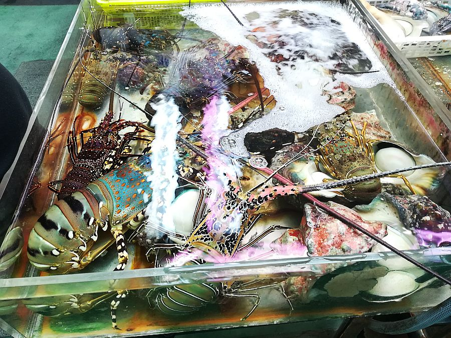 Lobsters in Makishi public market, Naha