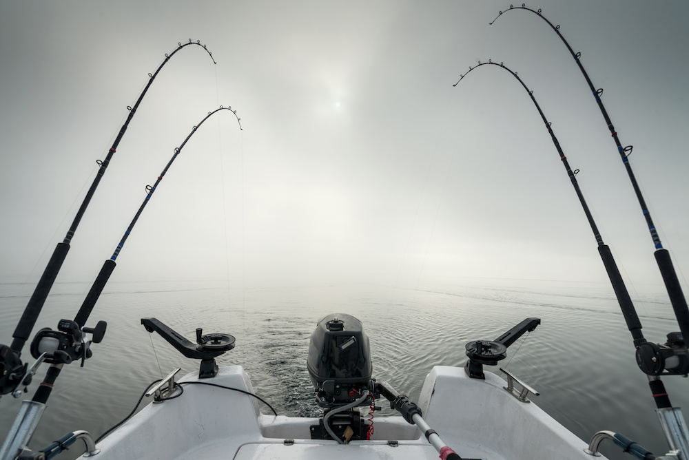 Best Fishing Rods for Saltwater and Fresh Water