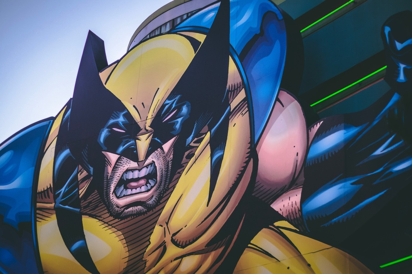 picture of wolverine