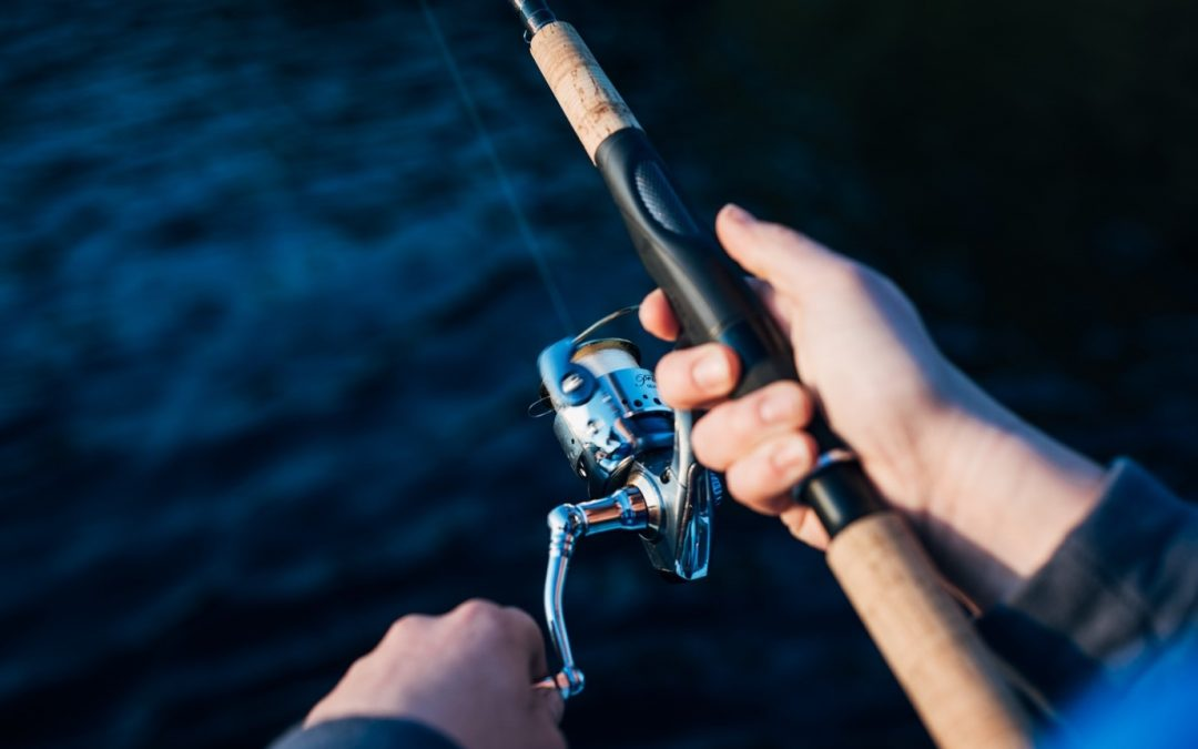 From Spincast to Baitcast: Common Types of Fishing Reels