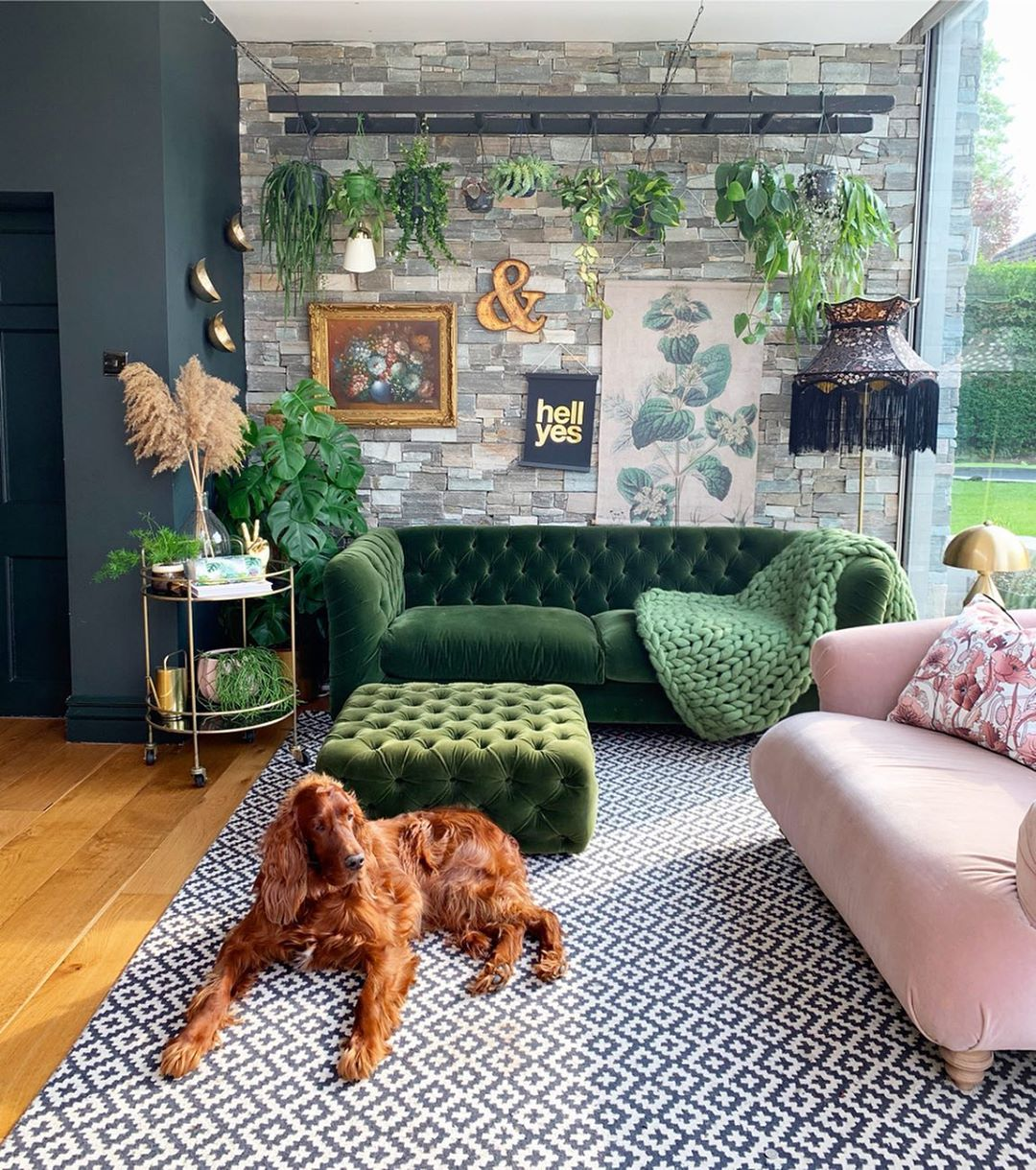 Cozy living space, with green sofa and cozy dog
