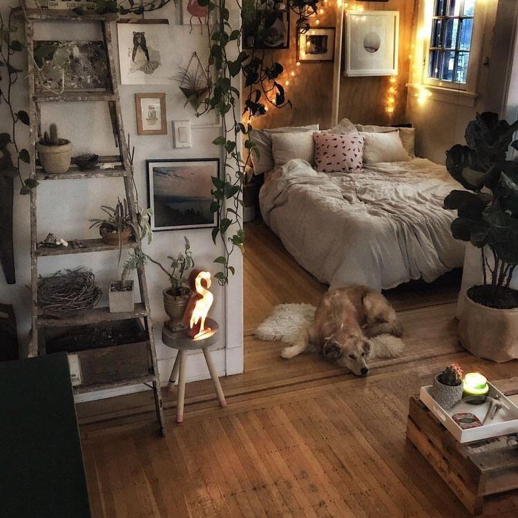 Cozy bedroom space, with lights and plants, and a dog