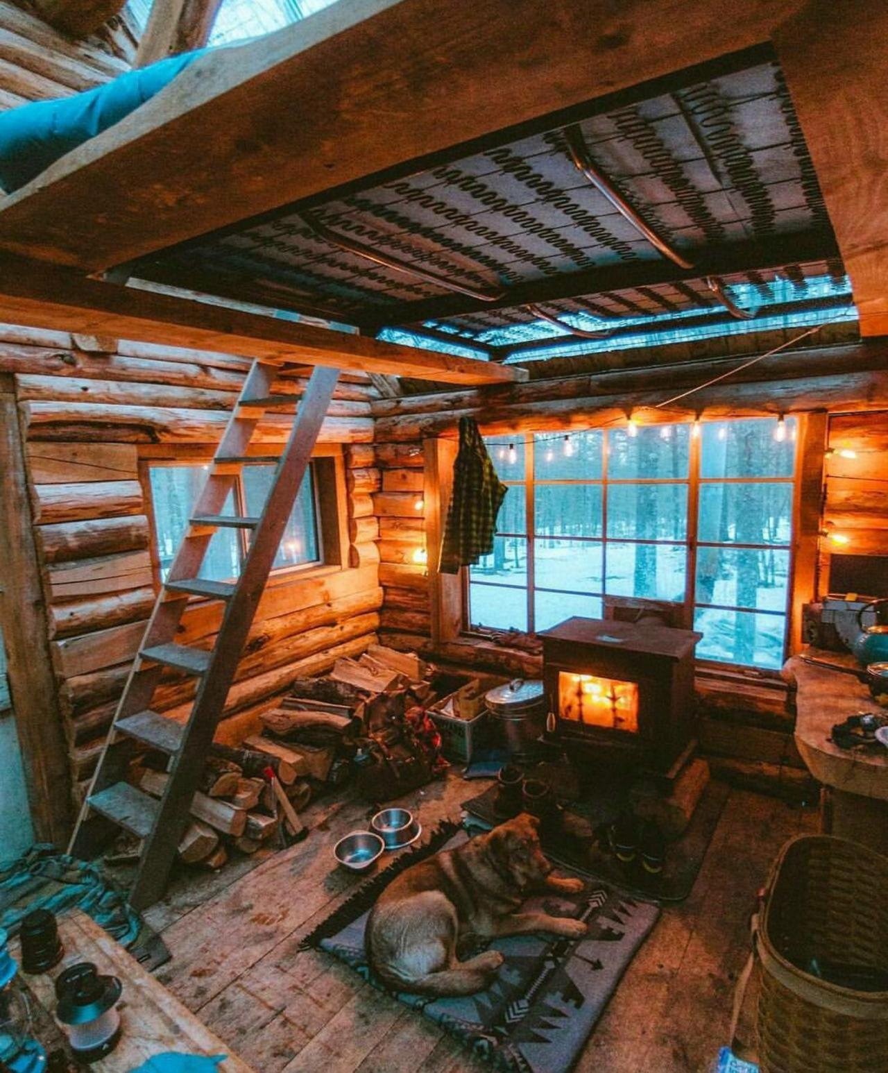 Cozy cabin in the winter, with dog and fireplace