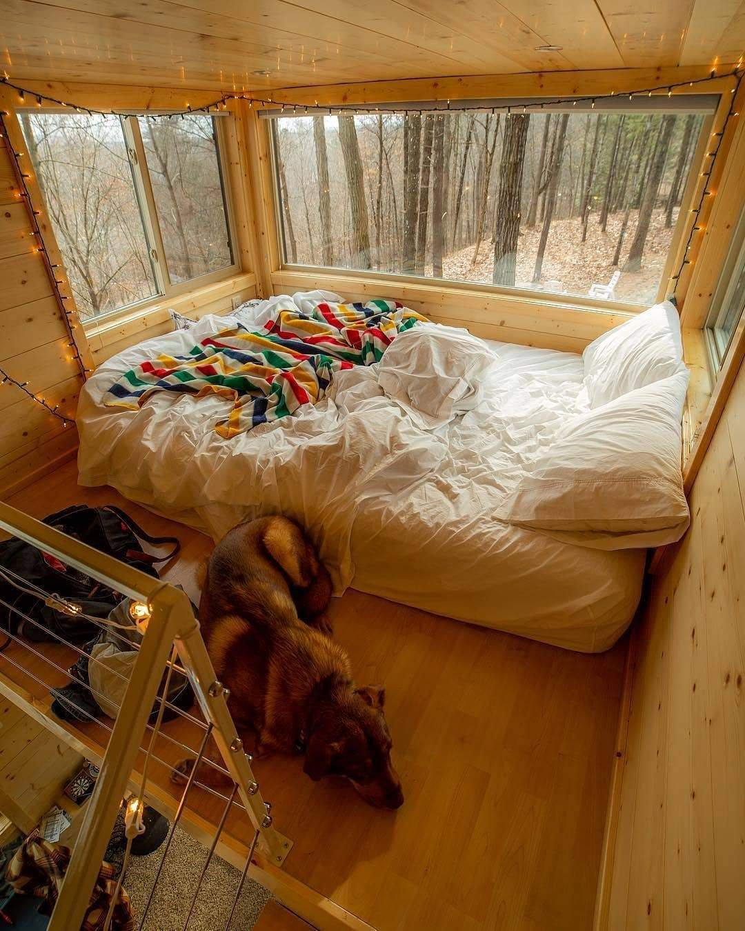 Cozy loft cabin bedroom with a dog, on a rainy day